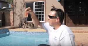 pool algae problem